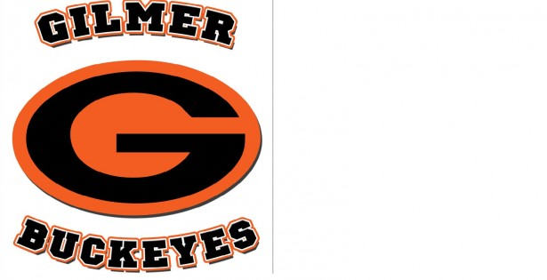 Gilmer ISD - Noon Real Estates, TX Homes for Sale in
